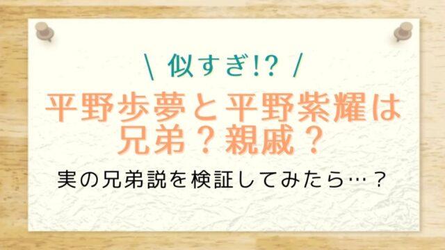 平野歩夢の兄弟はジャニーズの平野紫耀?似すぎなので親戚説を検証してみた結果…!?